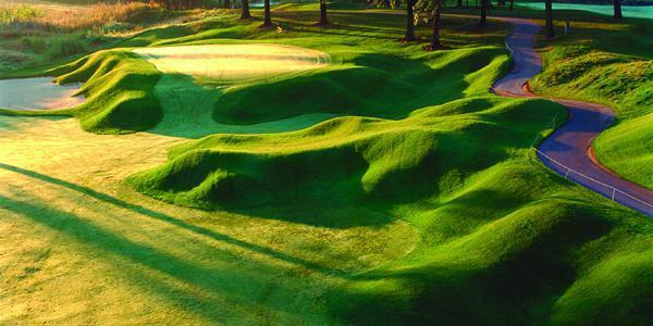 Fieldstone Golf Club wedding Detroit