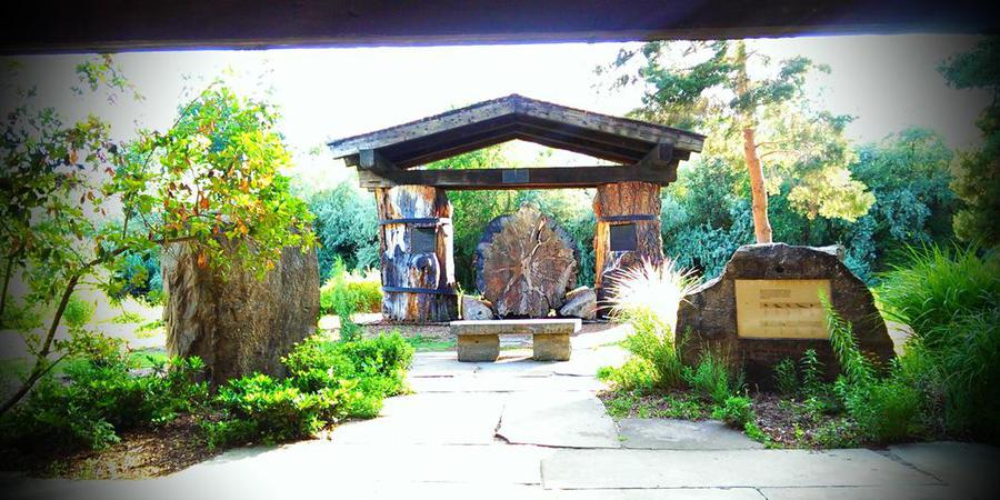 Kathryn Albertson Park wedding Idaho