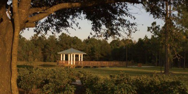 OakLeaf Plantation wedding Jacksonville