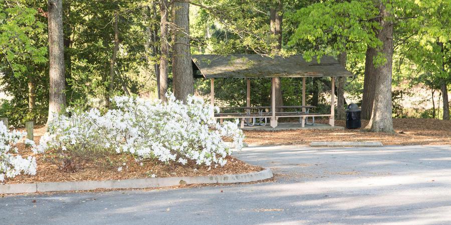 Bennett's Creek wedding Virginia Beach