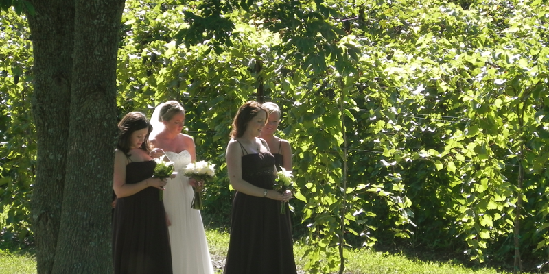 Shelburne Vineyard wedding Vermont