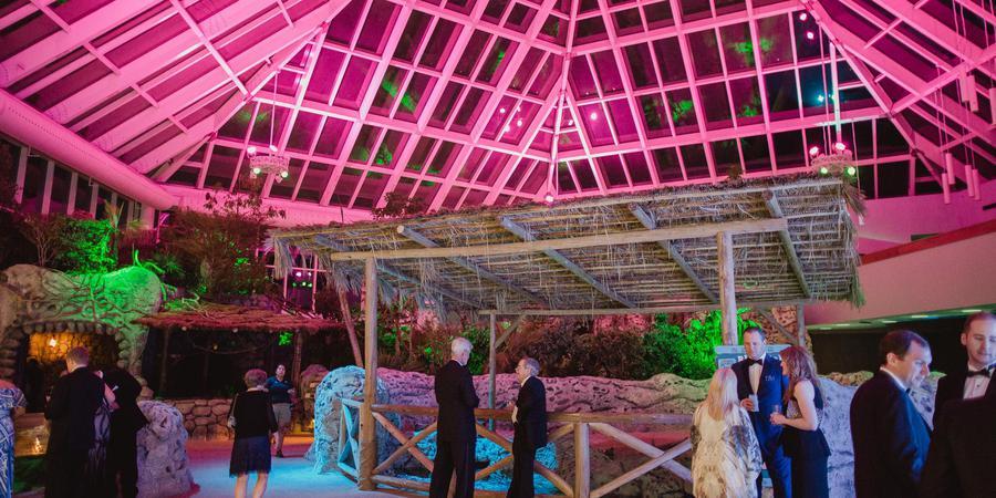 Texas State Aquarium wedding San Antonio
