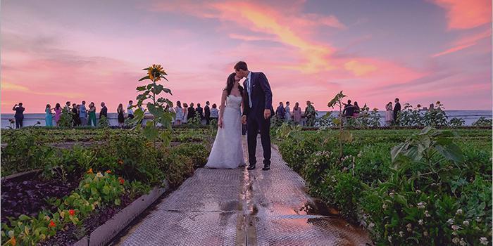 Brooklyn Grange Farm wedding Brooklyn