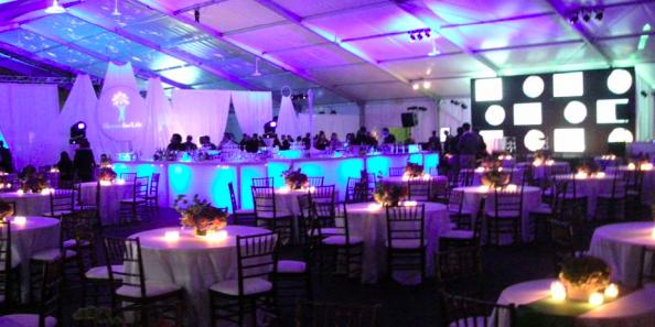 Northerly Island - Chicago Park District wedding Chicago
