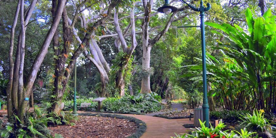 WahiawaBotanical Garden wedding Oahu