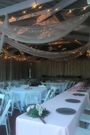 Sophia M Sachs Butterfly House wedding St. Louis