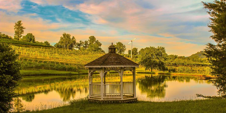 Crane Creek Vineyard wedding Atlanta