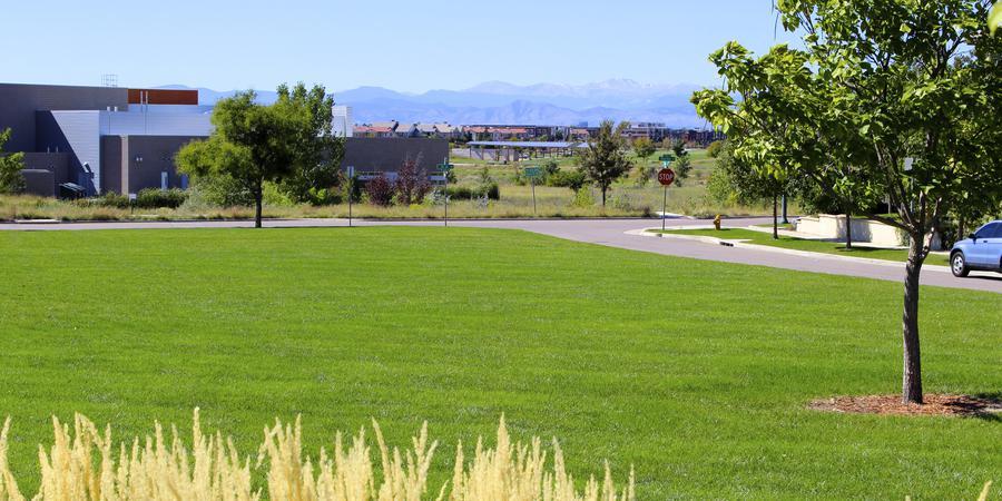 Summer Park wedding Denver