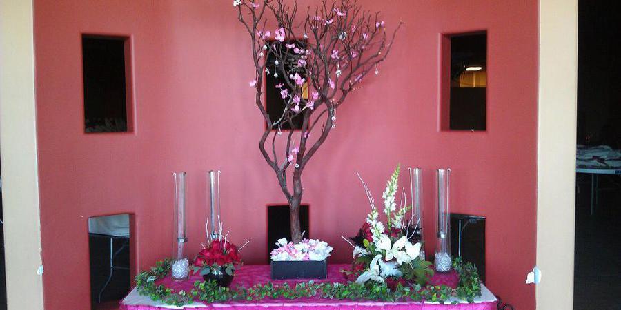 Yesenias Reception Hall wedding Phoenix/Scottsdale