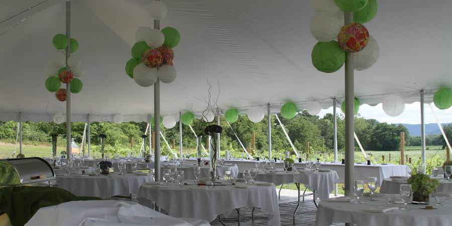 Elmaro Vineyard wedding Madison
