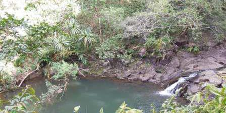 Twin Falls wedding Maui
