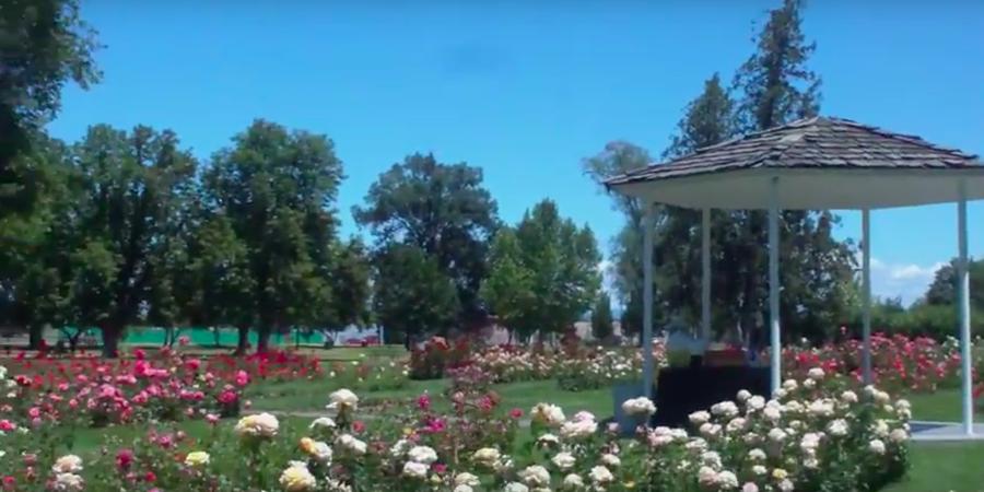 Nampa City Rose Garden wedding Idaho
