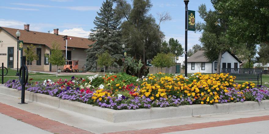 Boardwalk Community Park wedding Boulder/Fort Collins