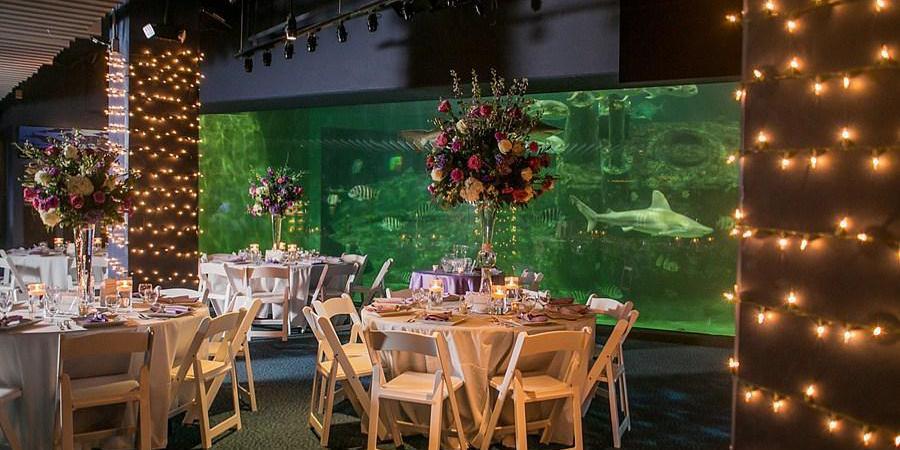 NC Aquarium at Pine Knoll Shores | Venue, Pine Knoll Shores