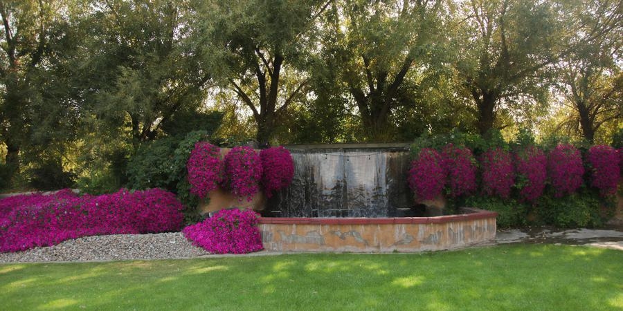 The Castle Vineyards wedding Spokane