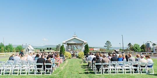 Hermitage Hill Farm and Stables wedding Charlottesville