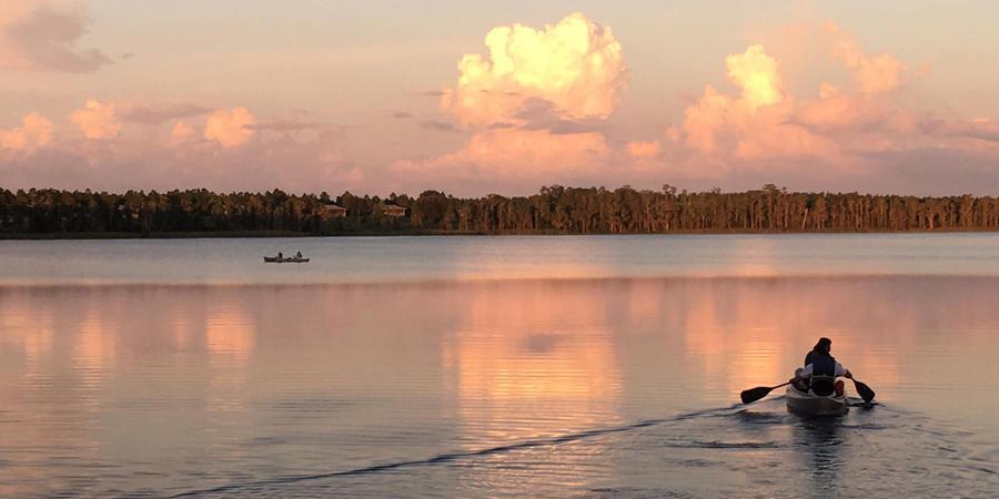 Lake Louisa State Park wedding Orlando