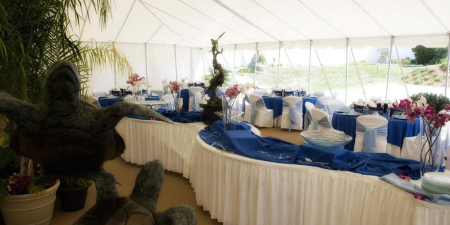 Marineland Dolphin Adventure wedding Jacksonville