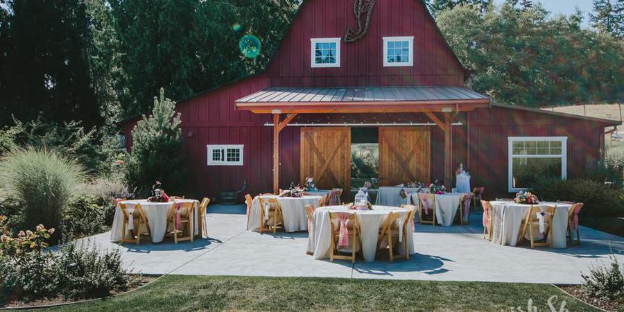 Dancing Fish Vineyards wedding Everett