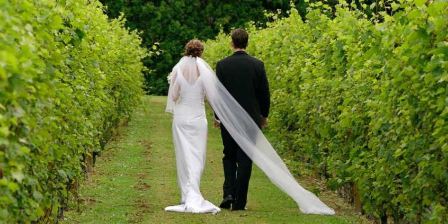 Prince Michel Vineyard Winery wedding Northern Virginia
