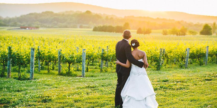 Breaux Vineyards wedding Northern Virginia