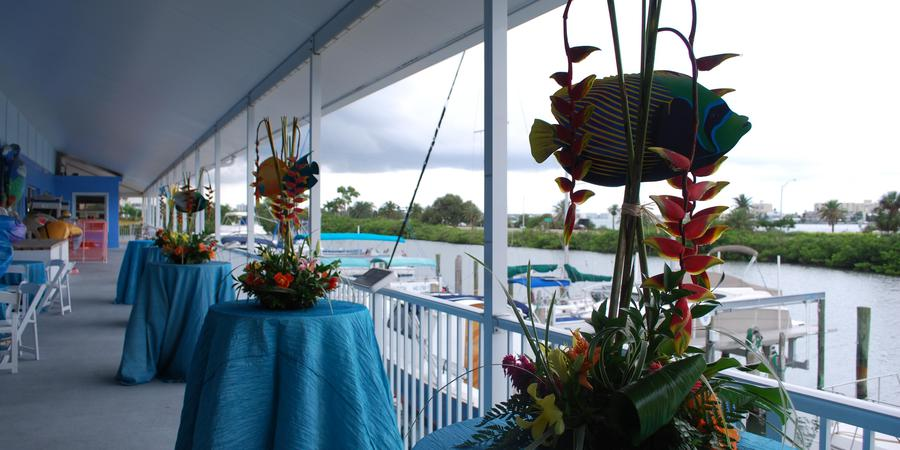 Clearwater Marine Aquarium wedding Tampa