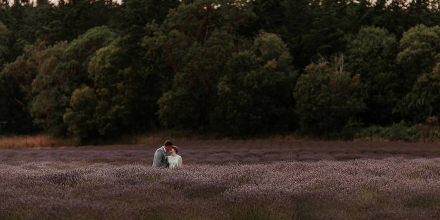Pelindaba Lavender Farm wedding Everett