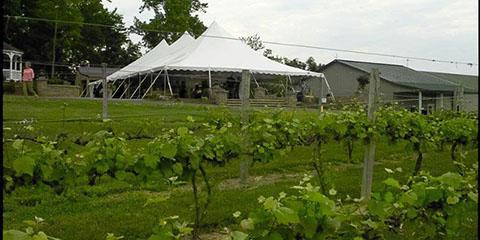 Virginia Mountain Vineyards wedding Southwest Virginia