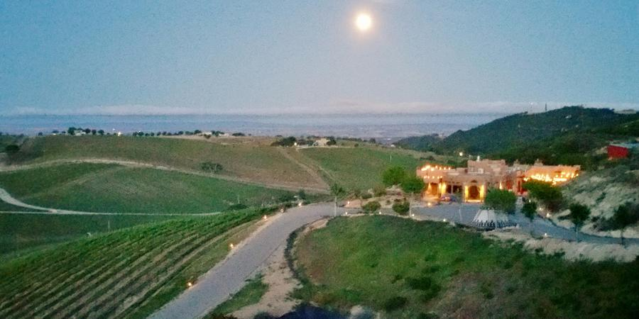 Wild Coyote Winery Bed and Breakfast wedding Central Coast