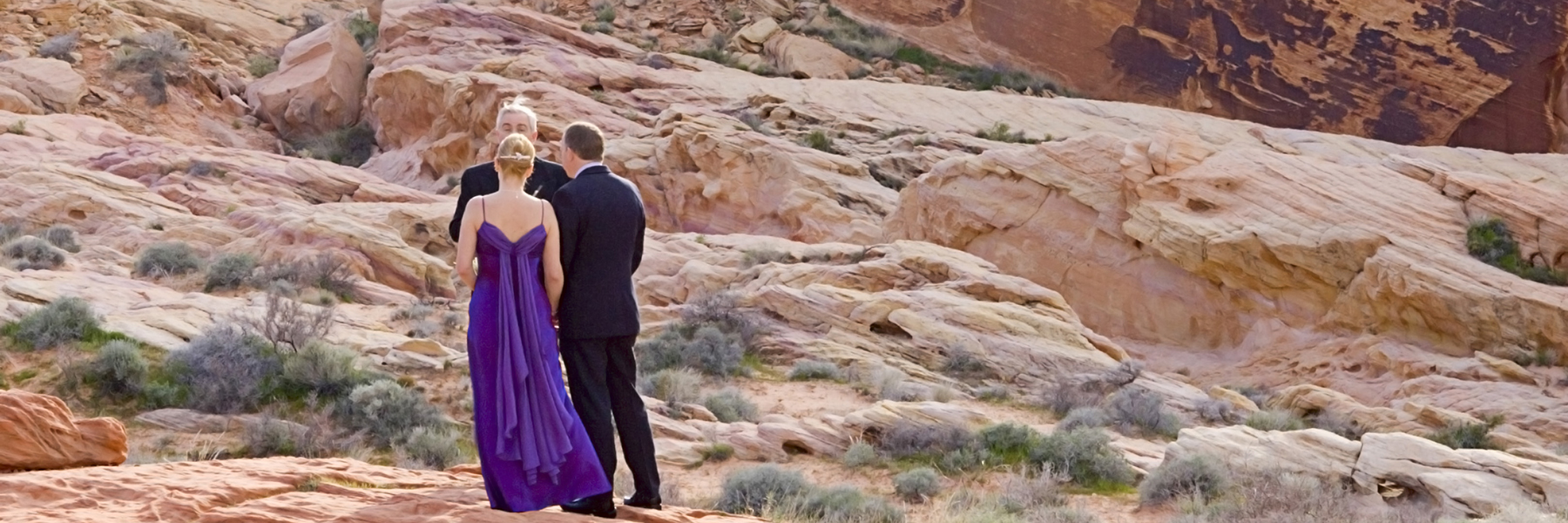 nevada cover - best beach wedding venues in california
