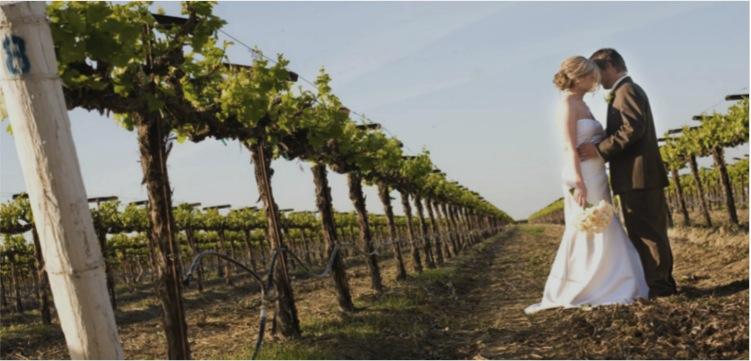 Best Winery/Vineyard Wedding Venues