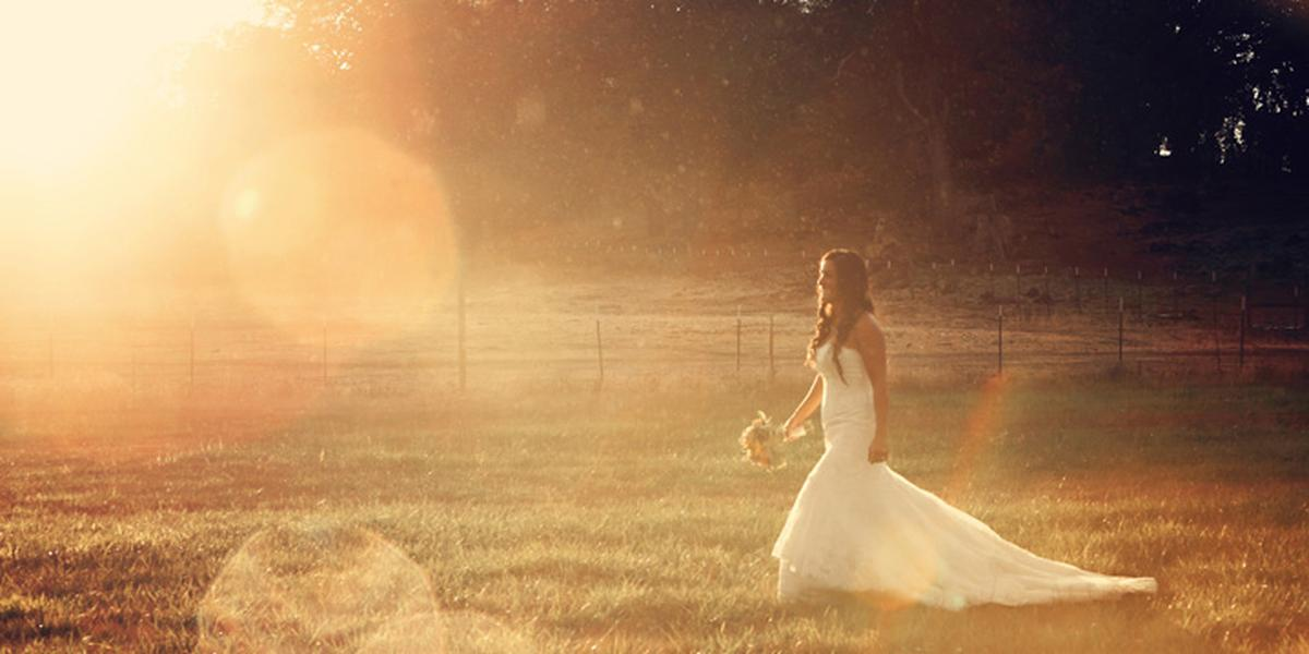 Wedding Photography Prices In California: Laurie Ann Martin Photography