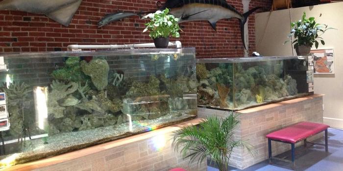 World Aquarium Weddings   Get Prices for Wedding Venues in MO