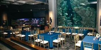 South Carolina Aquarium weddings in Charleston SC