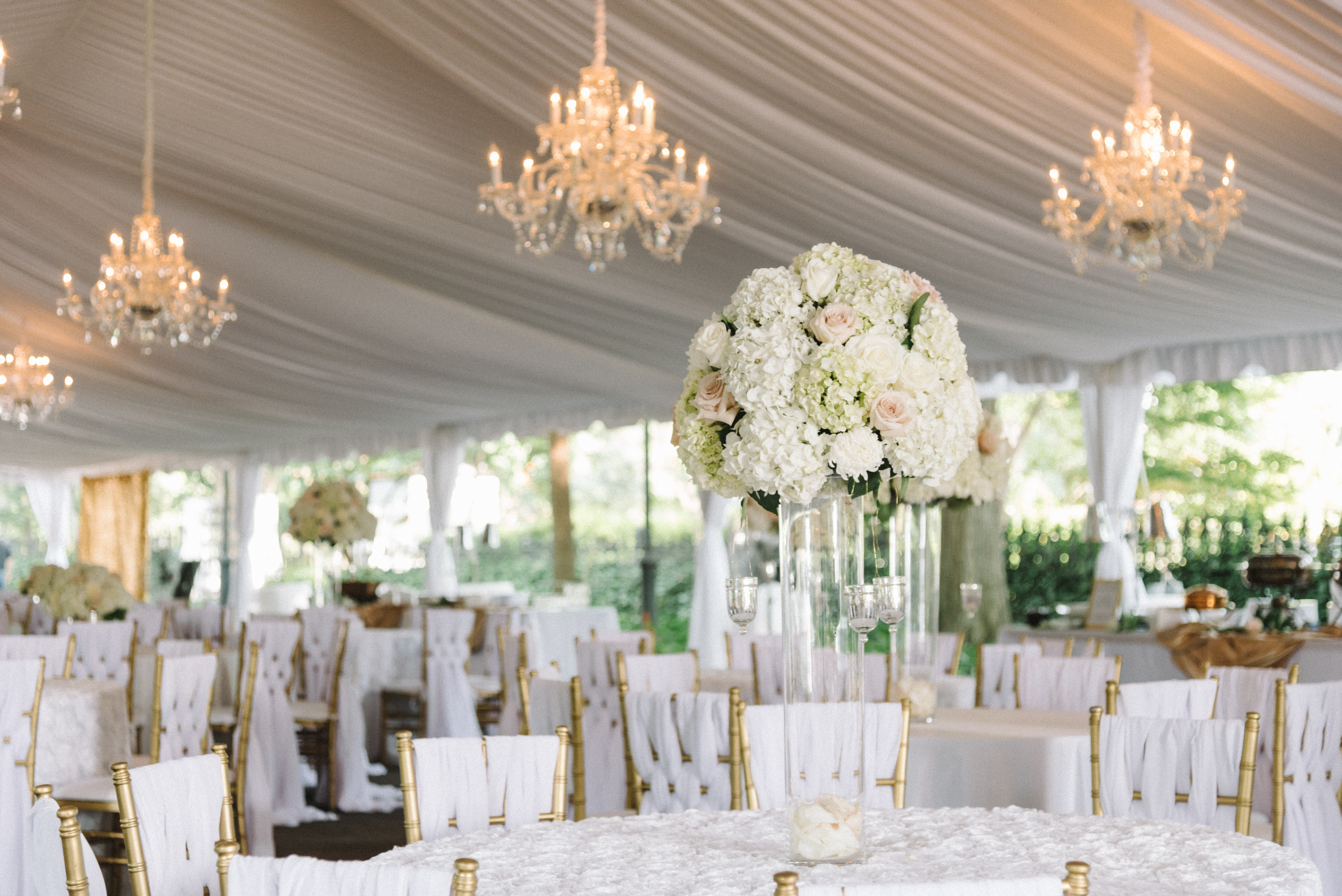 Lace House Venue Columbia Get Your Price Estimate Today