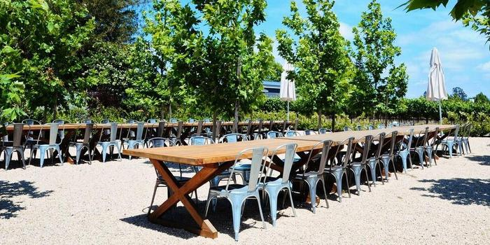 DeLoach Vineyards Wedding Venue Picture 5 Of 8   Provided By: De Loach  Vineyards Part 73