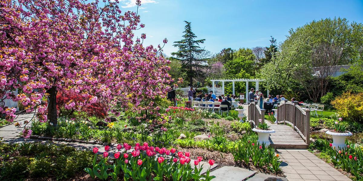 botanical gardens wedding prices chicago botanic garden wedding cost garden ftempo meadowlark