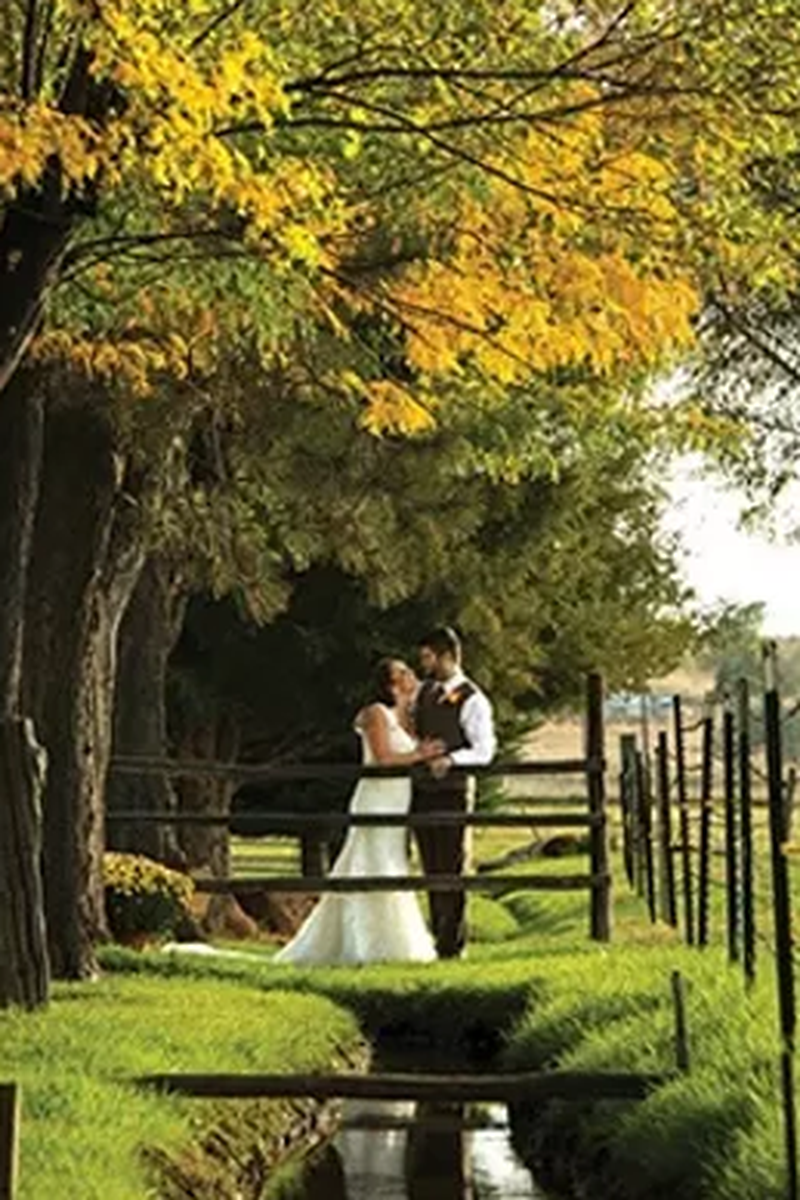 Shupe Homestead Weddings Get Prices For Wedding Venues In Co