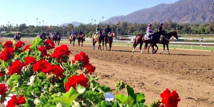 Santa Anita Park Weddings Get Prices For Wedding Venues