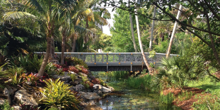 Mounts botanical garden weddings get prices for wedding - West palm beach botanical garden ...
