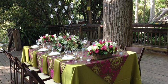 Special Events at Zoo Atlanta wedding Atlanta