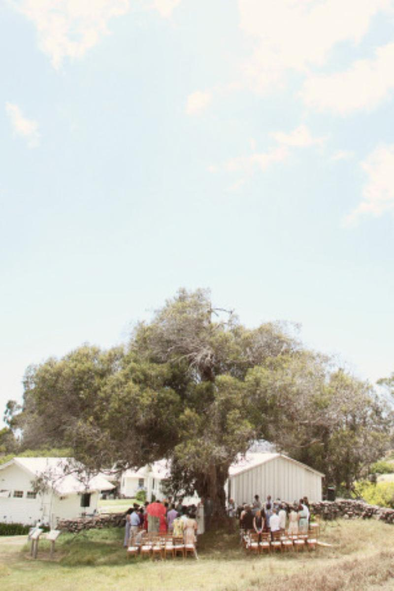 Anna Ranch Heritage Center wedding venue picture 6 of 16 - Photo by: Ruth Anne Photography