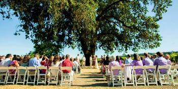 deLorimier Winery wedding venue picture 11 of 16