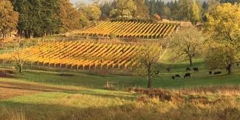 Natalie's Estate Winery weddings in Newberg OR