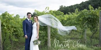 Heron Hill Winery weddings in Hammondsport NY