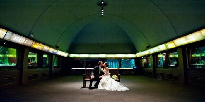 Shedd Aquarium wedding venue picture 6 of 16 - Photo by: Matushek Photography