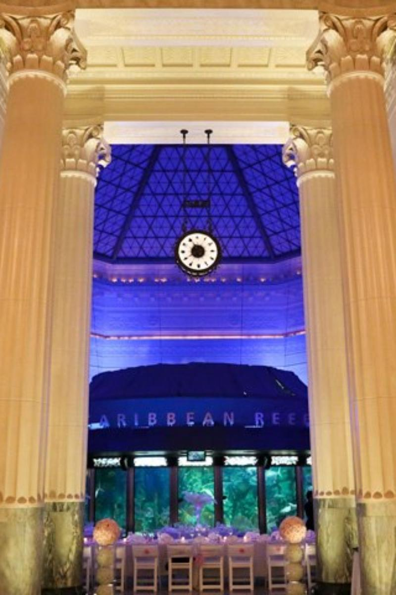 Shedd Aquarium wedding venue picture 10 of 16 - Photo by: Brett Kramer Photography
