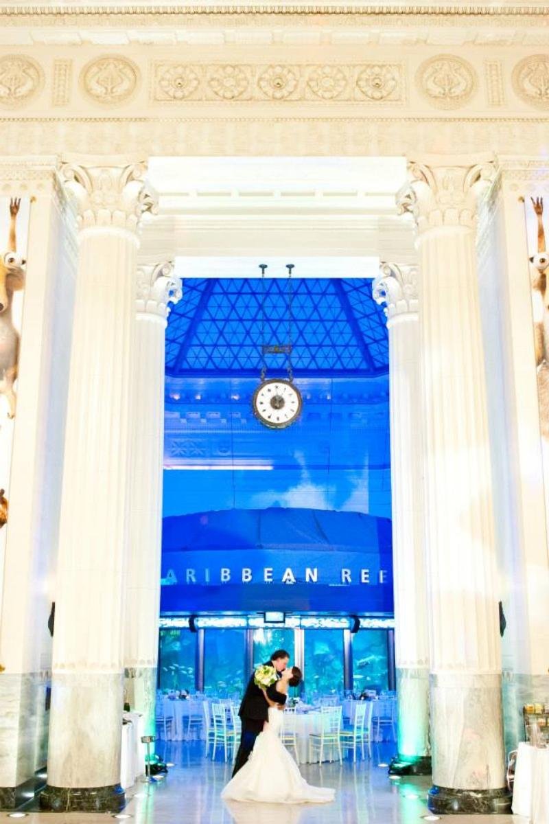 Shedd Aquarium wedding venue picture 13 of 16 - Photo by: Matushek Photography