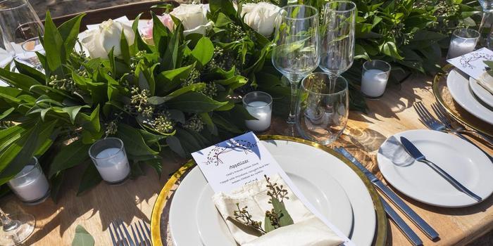 Royalton Negril Resort & Spa Weddings   Top Wedding Venues ...