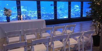Gulfarium Marine Adventure Park weddings in Fort Walton Beach FL
